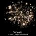 Звездная россыпь (FP-B103)